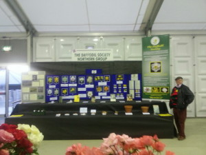The Daffodil Society Stand at Harrogate