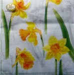 Napkins - Narcissus Design