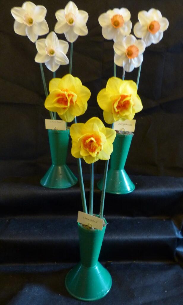 Vase of 3